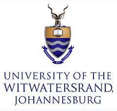 University of the Witwatersrand - MAES Therapy Presentation