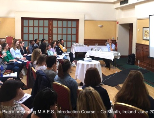 M.A.E.S. Therapy Introduction Course – Ireland 2019