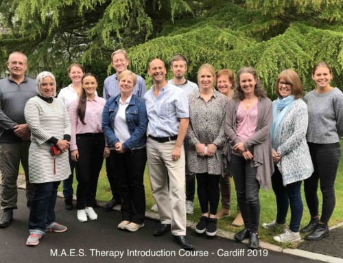 M.A.E.S. Therapy Introduction Course – Cardiff 2019