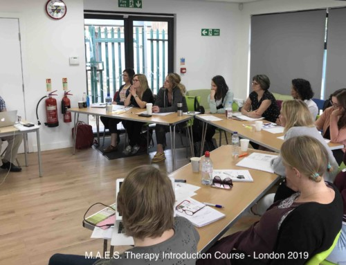 M.A.E.S. Therapy Introduction Course –  London 2019