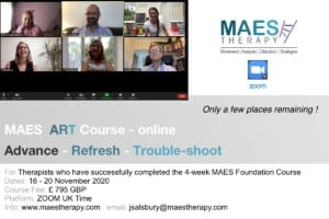 MAES Therapy Advanced Course for Neurodevelopmental Paediatric Therapists treating babies and children with CP