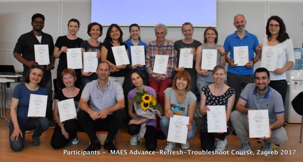 Advanced Course for M.A.E.S. Trained Therapists (PT,OT,SLT, Dr.) treating babies, children and adults with CP and similar neuro-developmental conditions