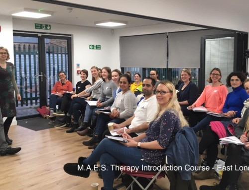 (English) M.A.E.S. Therapy  2-Day Introduction Course –  London January 2020