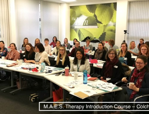 (English) M.A.E.S. Therapy  2-Day Introduction Courses –  Colchester March 2020