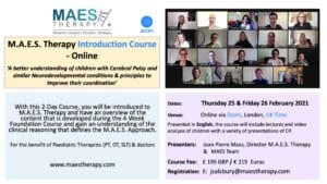 MAES Therapy 2-Day Introduction Course Online UK Time Feb.2021