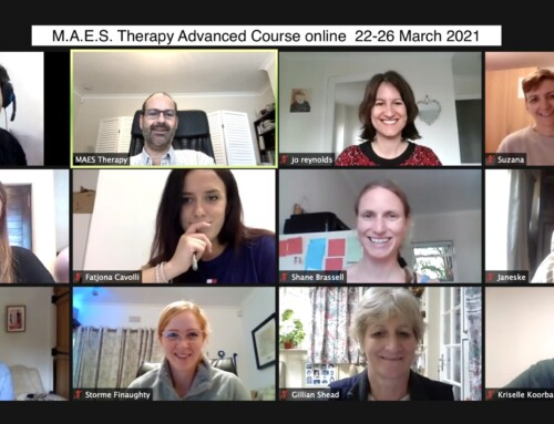 Advanced  M.A.E.S. Therapy Course – March 2021